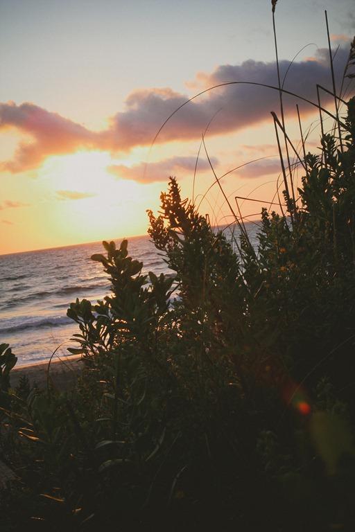 Beach-125