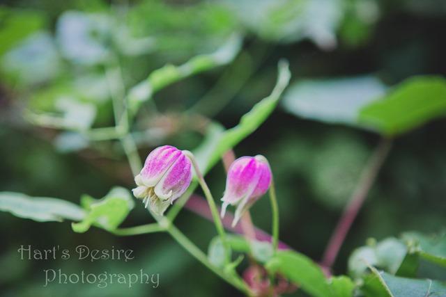 S Blog-46