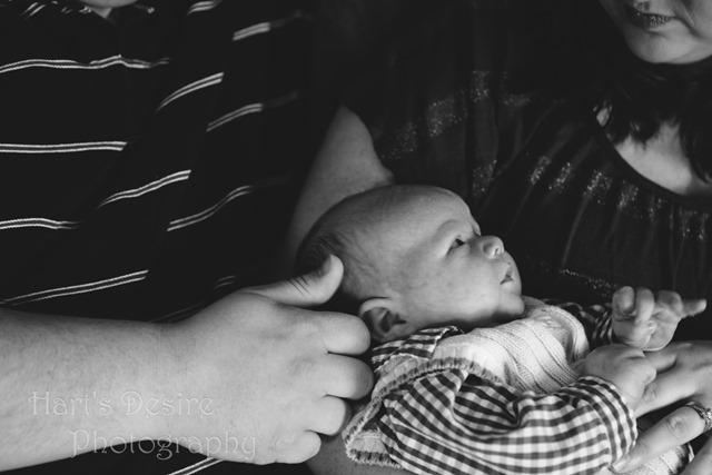 Baby Phillips, Blog-4