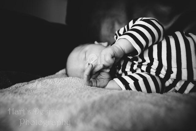 K Newborn-3