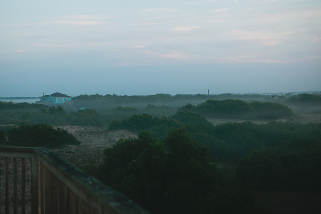 OBX (1 of 246)