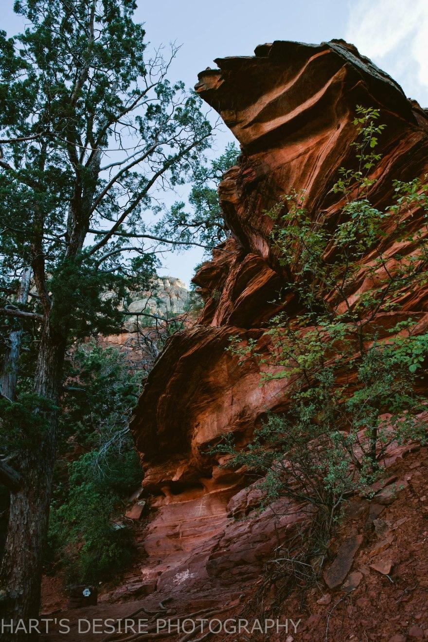 Arizona-69